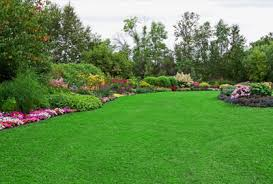 Global Garden and Lawn Market 2017-2022