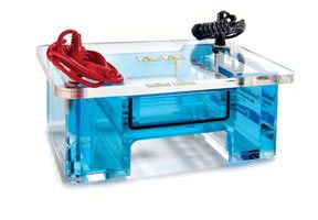 20Electrophoresis Systems