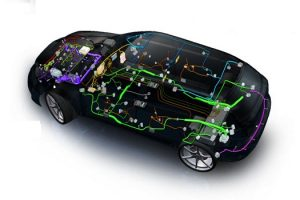 Vehicle Wiring Harness