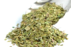 Yerba Mate Consumption Market