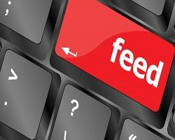 Feed Software Market