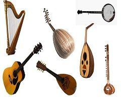 Plucked String Instruments Market