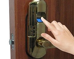Biometric Digital Door Lock Systems Market