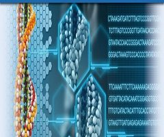 Sanger Sequencing Service