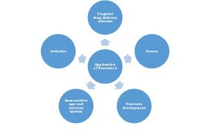 Global Exosome Diagnostic and Therapeutic Market