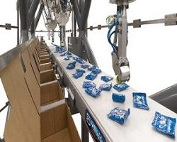 Case Packing Robot Market